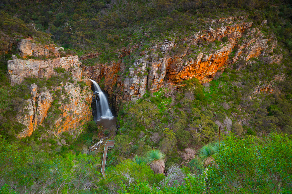 The 10 Attractions to Visit When in Adelaide - Waterfall Gully