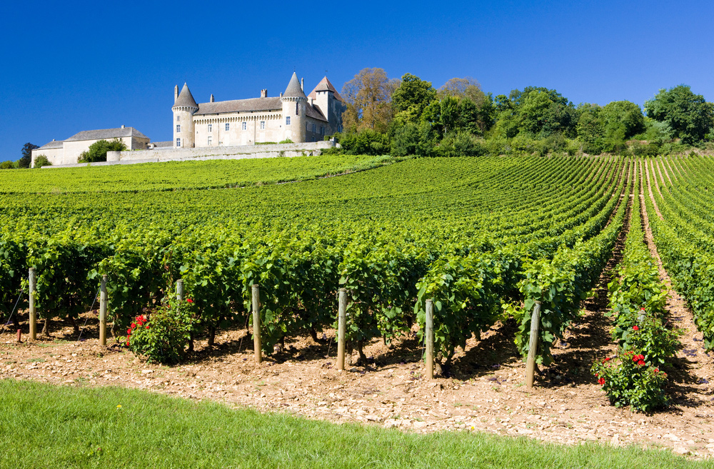8 Exciting Wine Regions to Visit – from France to Moldova - Burgundy, France