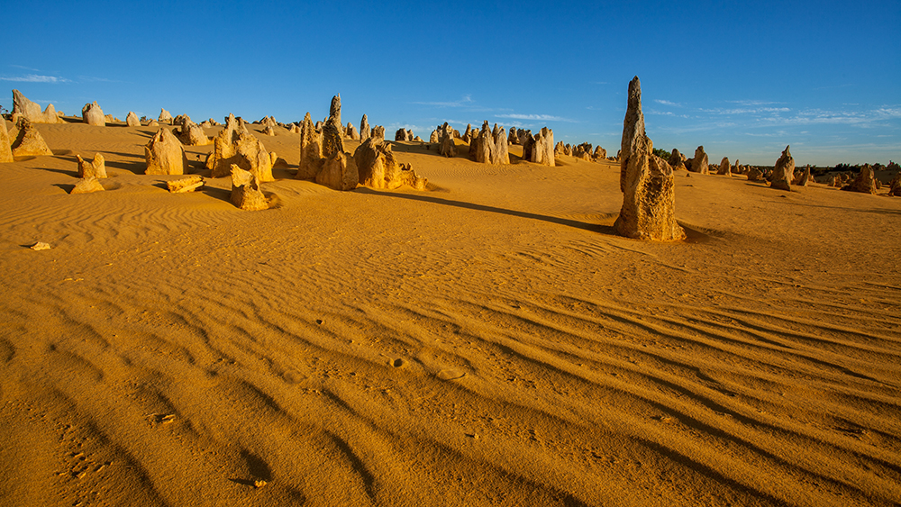 20 Surreal Places to Add to your Must-visit List - Pinnacles Desert