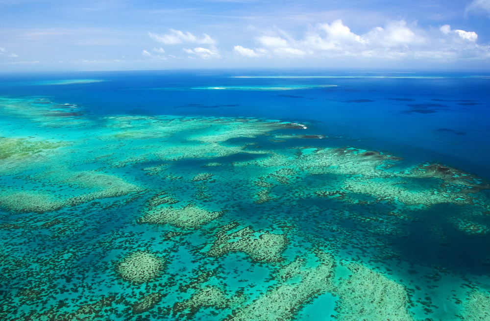 10 Photos That Will Make You Want To Visit Cairns - Great Barrier Reef
