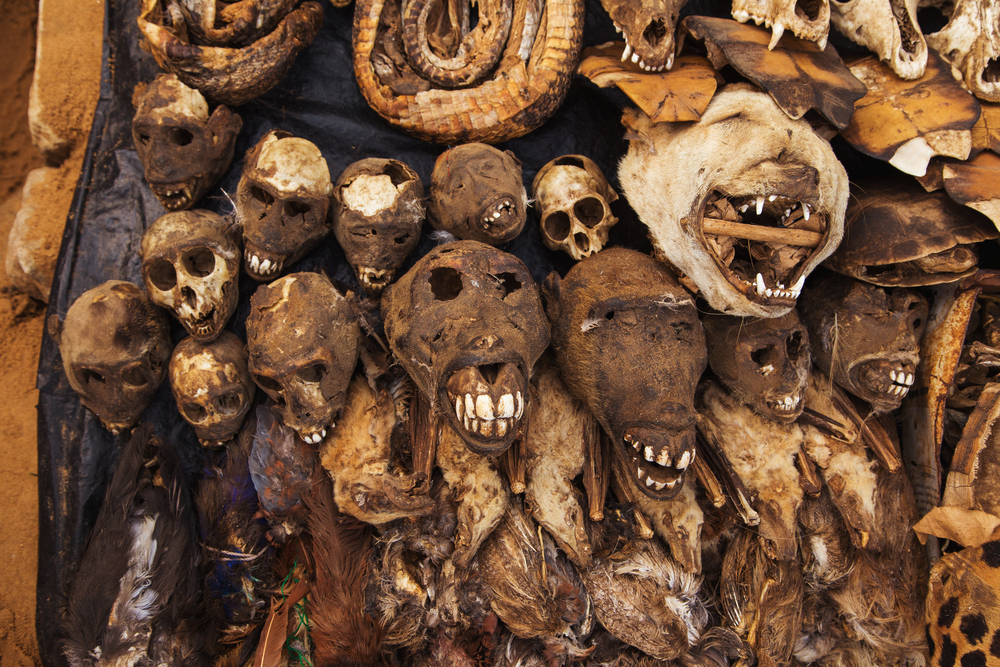 Terrifying Places that Will Surely Scare the Wits Out of You - Akodessewa Fetish Market - Voodoo Market