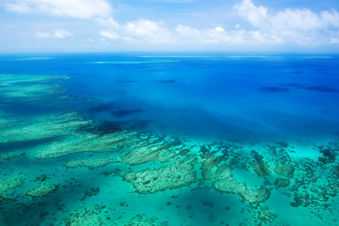Cairns: a bird's eye view of the Great Barrier Reef
