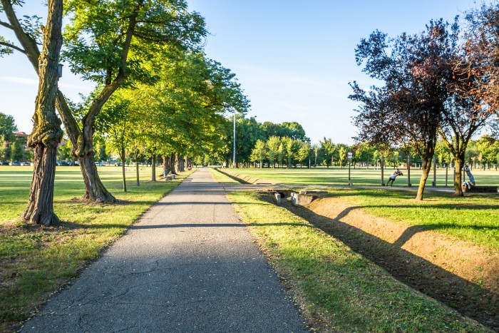 Milan: a sunny day in the park with trees and a walking path